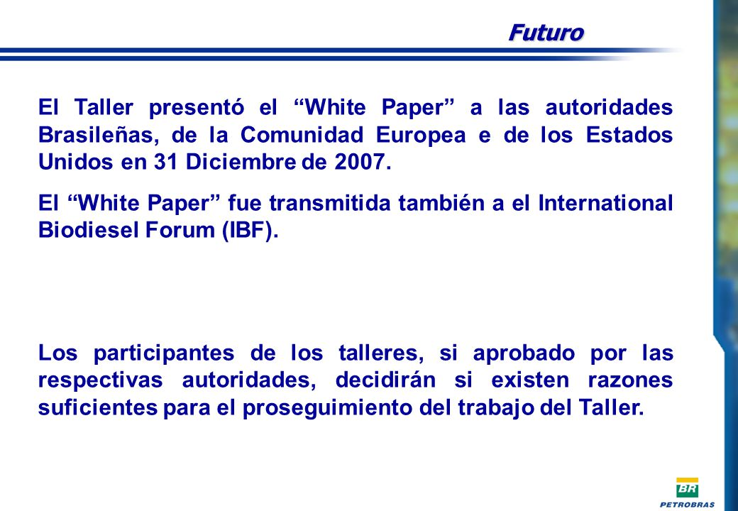 Futuro El Taller presentó el White Paper a las autoridades Brasileñas, de la Comunidad Europea e de los Estados Unidos en 31 Diciembre de 2007.