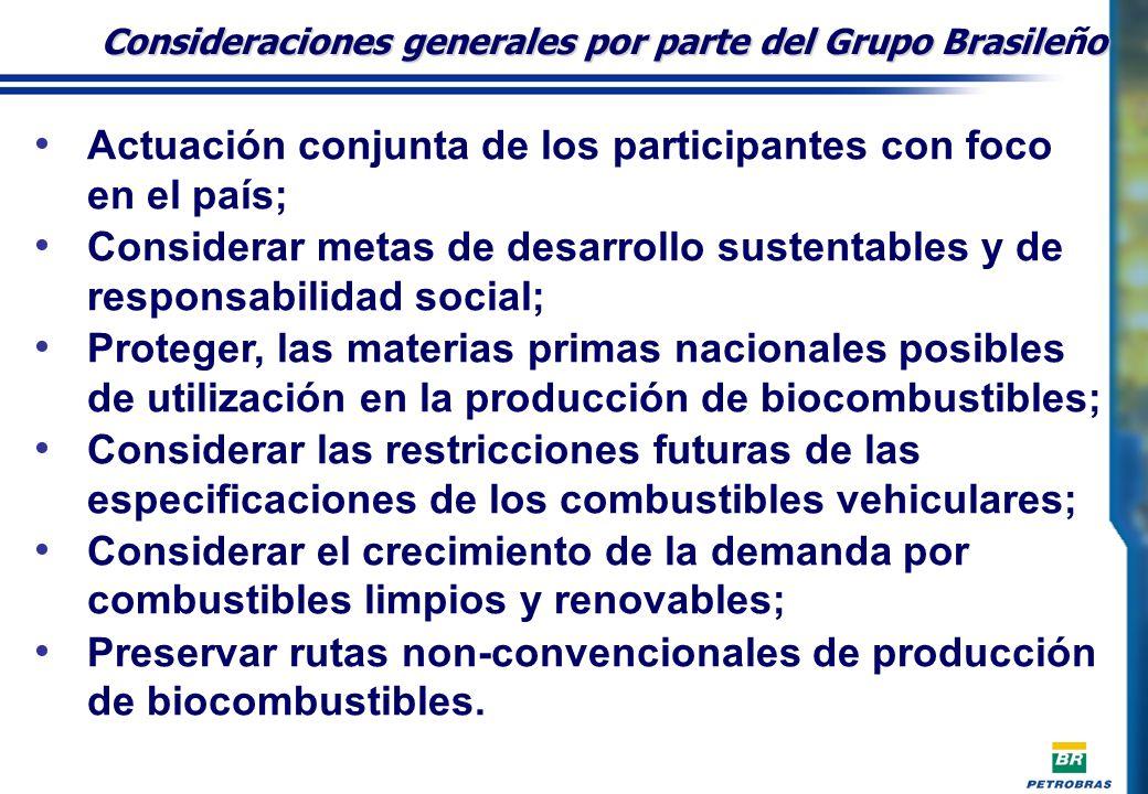 Actuación conjunta de los participantes con foco en el país; Considerar metas de desarrollo sustentables y de responsabilidad social; Proteger, las materias primas nacionales posibles de utilización en la producción de biocombustibles; Considerar las restricciones futuras de las especificaciones de los combustibles vehiculares; Considerar el crecimiento de la demanda por combustibles limpios y renovables; Preservar rutas non-convencionales de producción de biocombustibles.