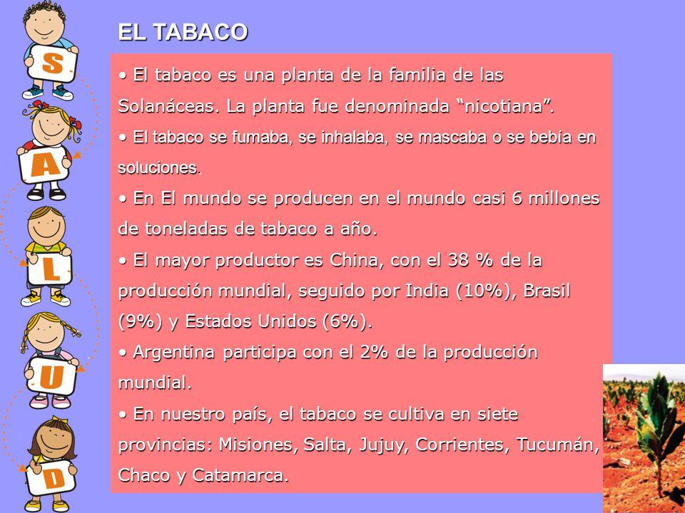 EL TABACO El tabaco es una planta de la familia de las Solanáceas. La planta fue denominada nicotiana. El tabaco es una planta de la familia de las So