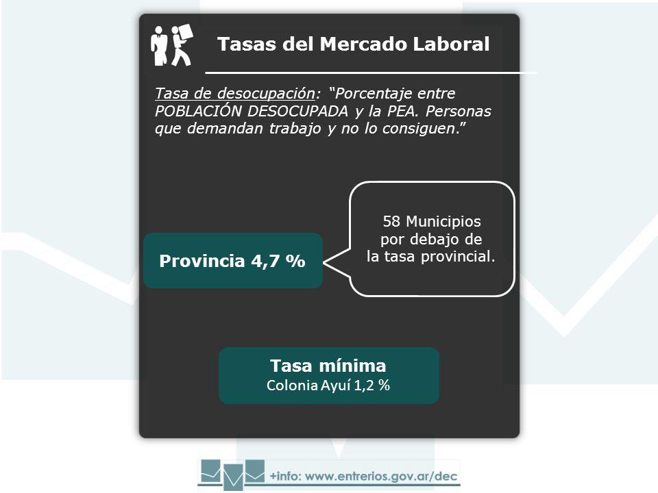 Tasas del Mercado Laboral Tasa de desocupación: Porcentaje entre POBLACIÓN DESOCUPADA y la PEA. Personas que demandan trabajo y no lo consiguen. Tasa