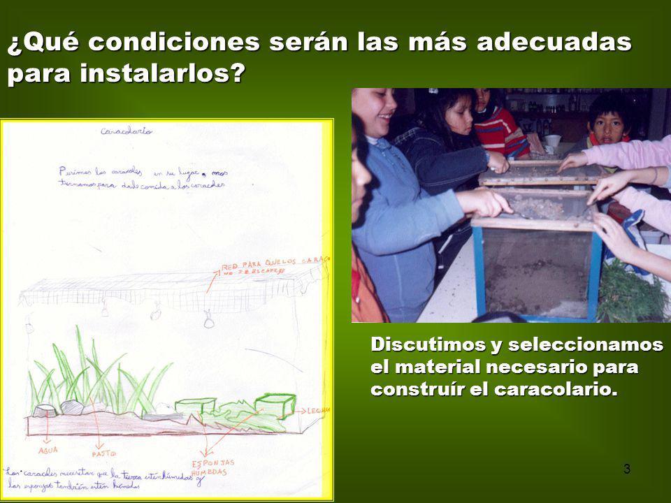3 Discutimos y seleccionamos el material necesario para construír el caracolario. ¿Qué condiciones serán las más adecuadas para instalarlos?