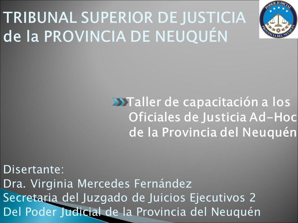 TRIBUNAL SUPERIOR DE JUSTICIA de la PROVINCIA DE NEUQUÉN Taller de capacitación a los Oficiales de Justicia Ad-Hoc de la Provincia del Neuquén Disertante: Dra.
