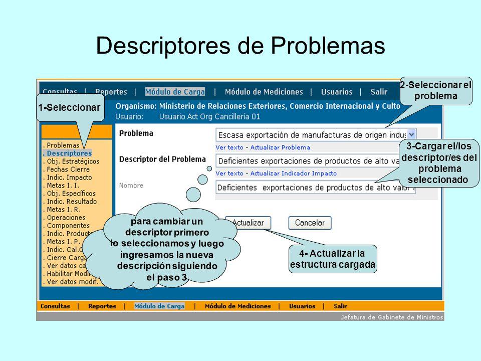 Descriptores de Problemas 2-Seleccionar el problema 3-Cargar el/los descriptor/es del problema seleccionado 1-Seleccionar para cambiar un descriptor p