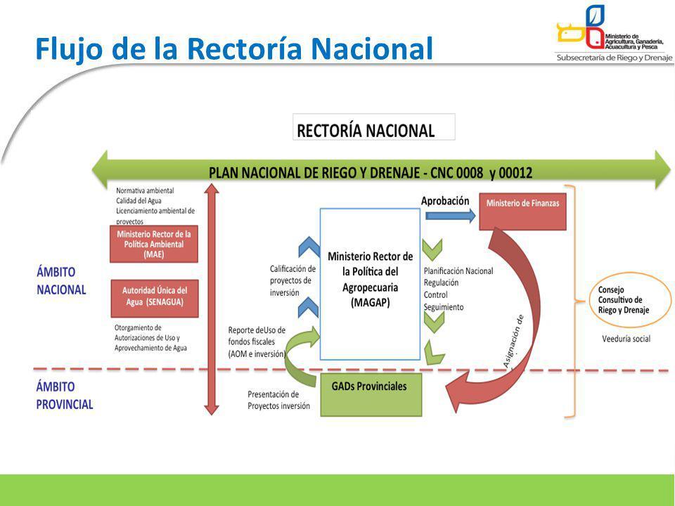 Flujo de la Rectoría Nacional