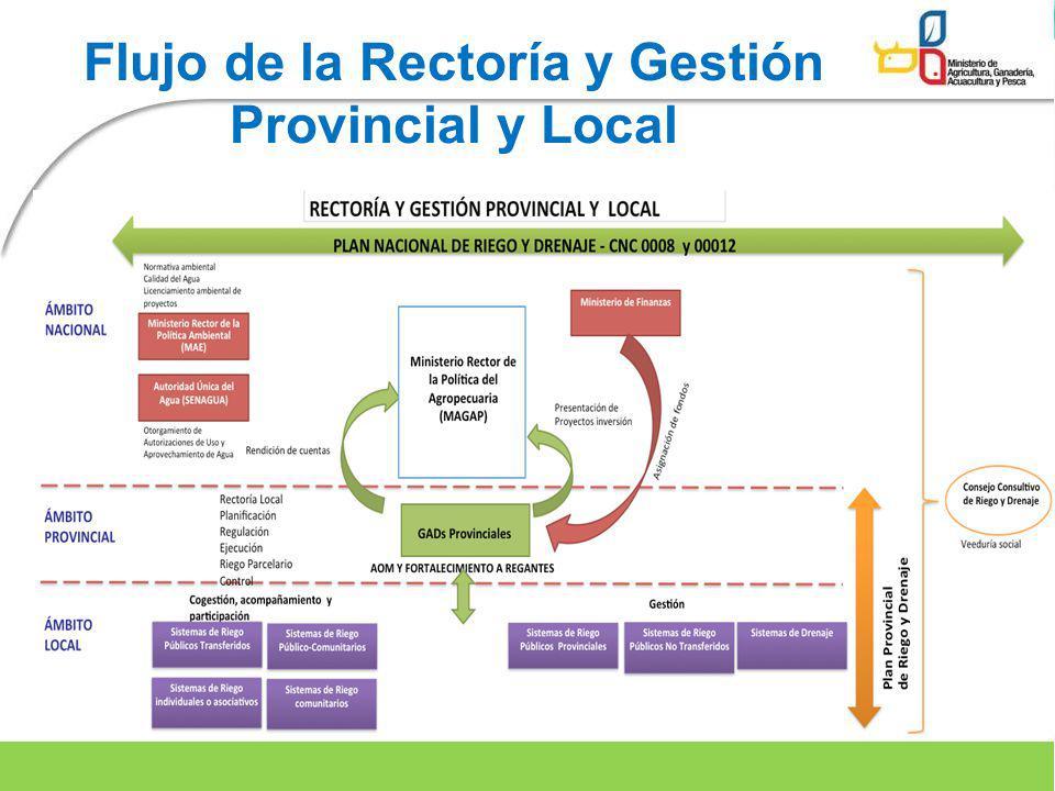 Flujo de la Rectoría y Gestión Provincial y Local