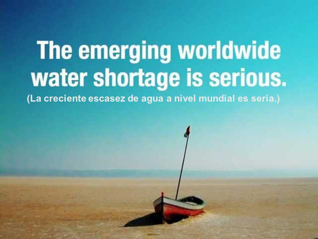 (De acuerdo a la O.N.U., un niño muere de una enfermedad relacionada con el agua cada 15 segundos.)