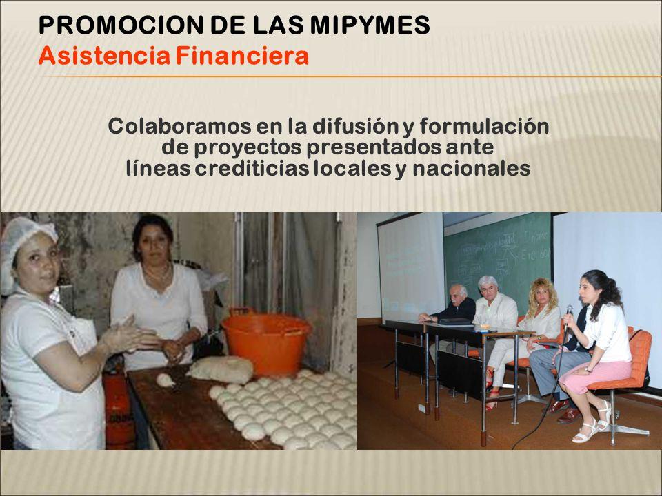 Colaboramos en la difusión y formulación de proyectos presentados ante líneas crediticias locales y nacionales PROMOCION DE LAS MIPYMES Asistencia Financiera