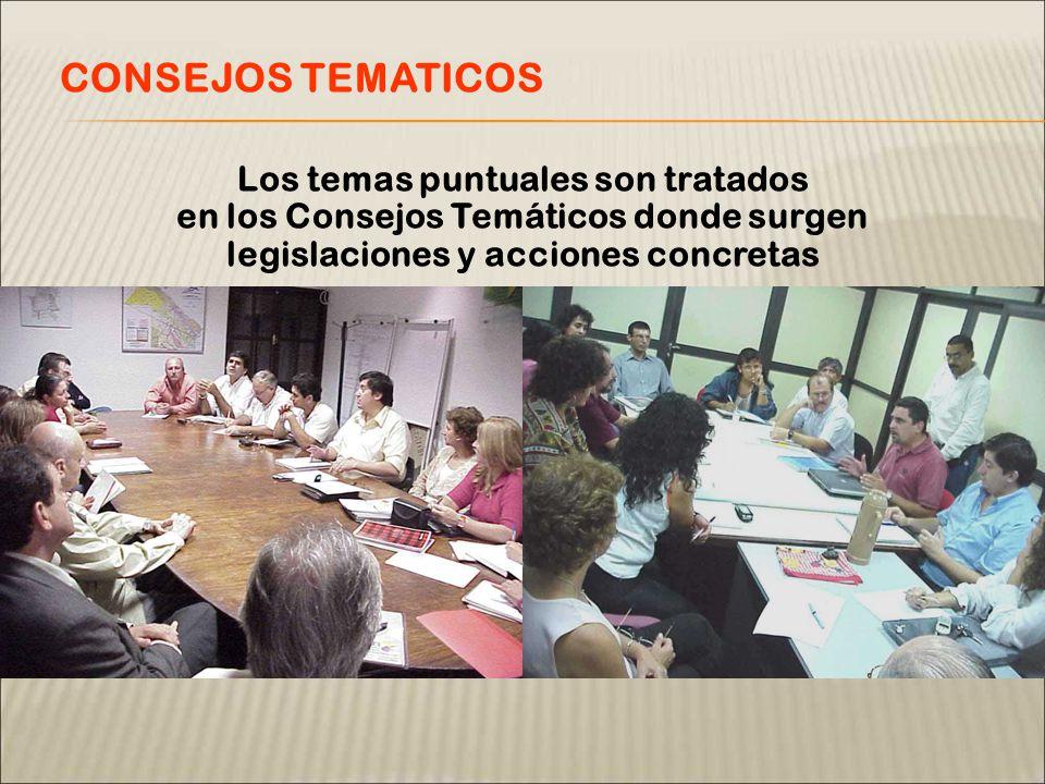 Los temas puntuales son tratados en los Consejos Temáticos donde surgen legislaciones y acciones concretas CONSEJOS TEMATICOS