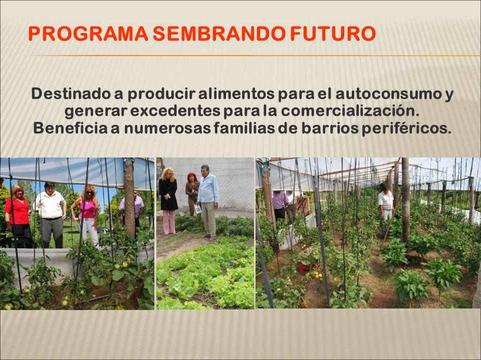 Destinado a producir alimentos para el autoconsumo y generar excedentes para la comercialización.