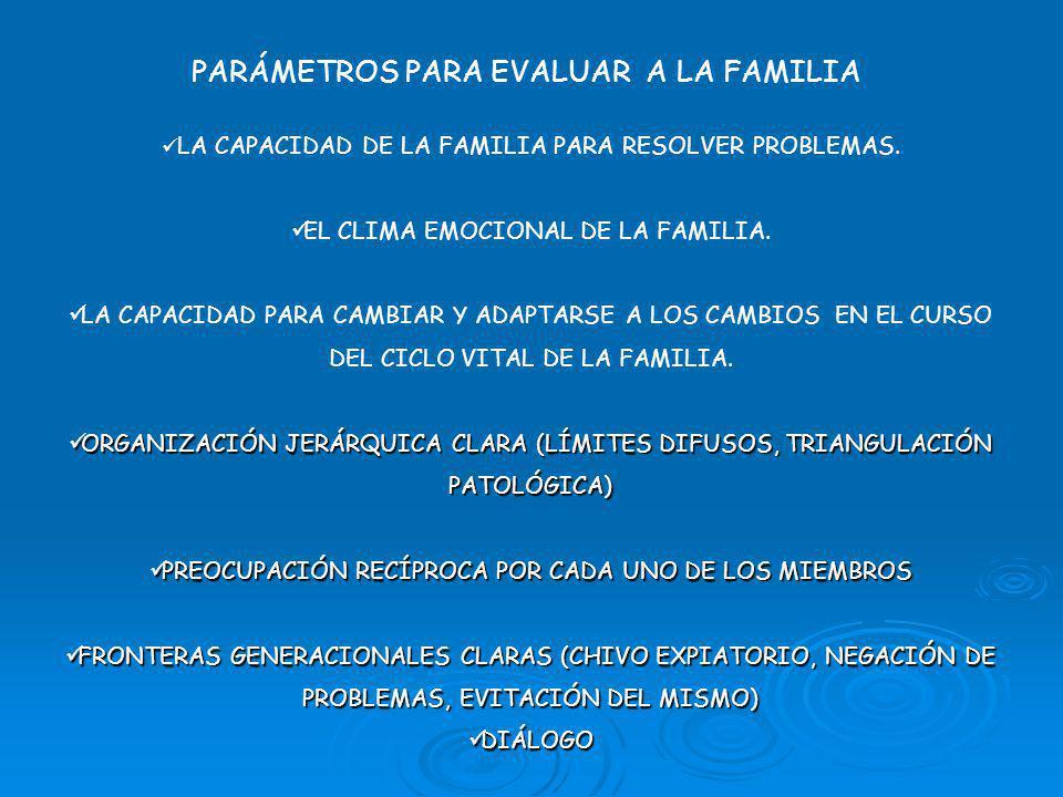 PARÁMETROS PARA EVALUAR A LA FAMILIA LA CAPACIDAD DE LA FAMILIA PARA RESOLVER PROBLEMAS.