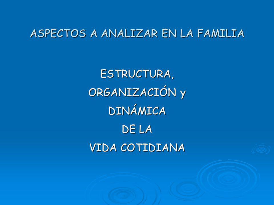 ASPECTOS A ANALIZAR EN LA FAMILIA ESTRUCTURA, ORGANIZACIÓN y DINÁMICA DE LA VIDA COTIDIANA