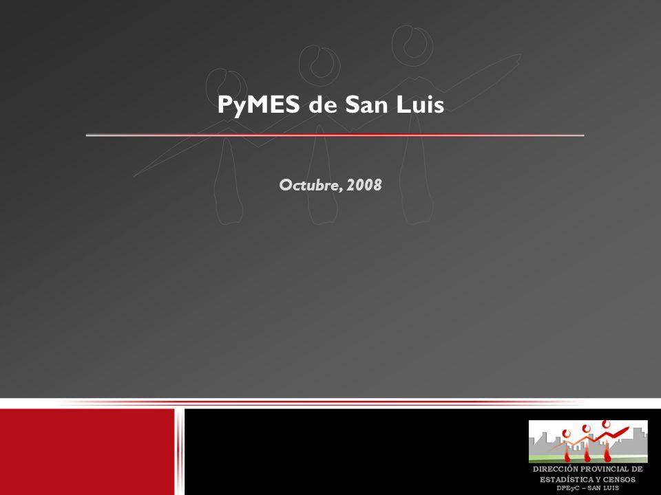 PyMES de San Luis Octubre, 2008