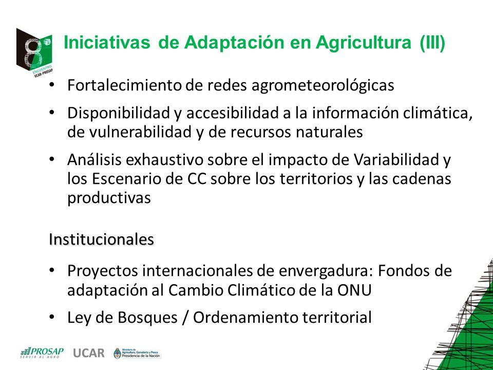 Fortalecimiento de redes agrometeorológicas Disponibilidad y accesibilidad a la información climática, de vulnerabilidad y de recursos naturales Análisis exhaustivo sobre el impacto de Variabilidad y los Escenario de CC sobre los territorios y las cadenas productivasInstitucionales Proyectos internacionales de envergadura: Fondos de adaptación al Cambio Climático de la ONU Ley de Bosques / Ordenamiento territorial Iniciativas de Adaptación en Agricultura (III)