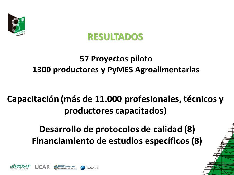 57 Proyectos piloto 1300 productores y PyMES Agroalimentarias Capacitación (más de 11.000 profesionales, técnicos y productores capacitados) Desarrollo de protocolos de calidad (8) Financiamiento de estudios específicos (8) RESULTADOS