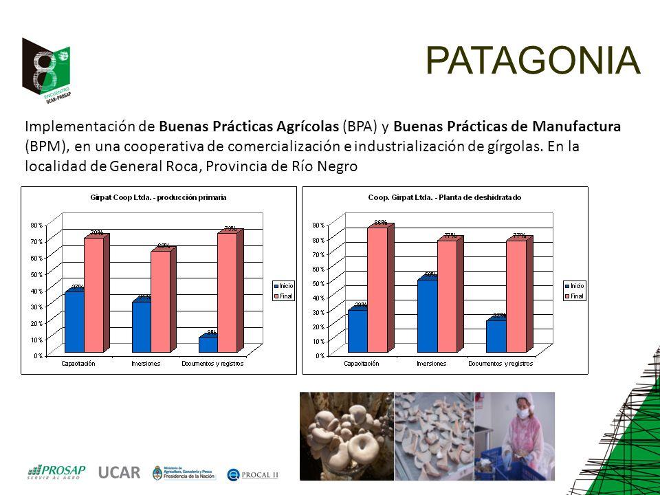 PATAGONIA Implementación de Buenas Prácticas Agrícolas (BPA) y Buenas Prácticas de Manufactura (BPM), en una cooperativa de comercialización e industrialización de gírgolas.