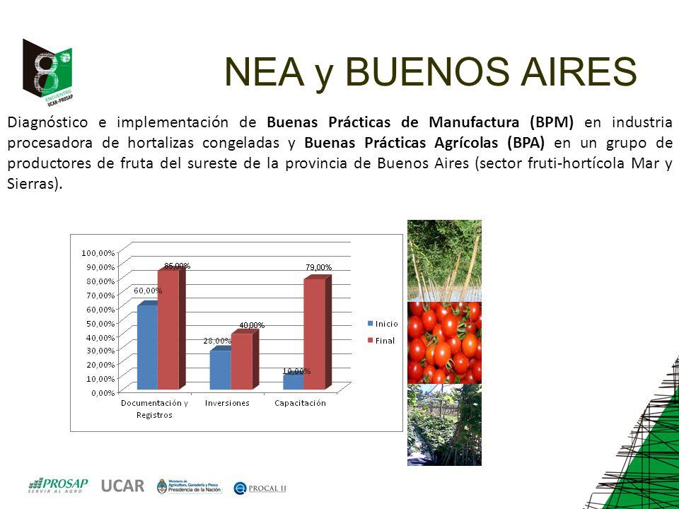 NEA y BUENOS AIRES Diagnóstico e implementación de Buenas Prácticas de Manufactura (BPM) en industria procesadora de hortalizas congeladas y Buenas Prácticas Agrícolas (BPA) en un grupo de productores de fruta del sureste de la provincia de Buenos Aires (sector fruti-hortícola Mar y Sierras).
