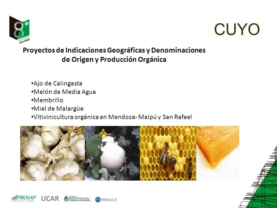 CUYO Proyectos de Indicaciones Geográficas y Denominaciones de Origen y Producción Orgánica Ajo de Calingasta Melón de Media Agua Membrillo Miel de Ma