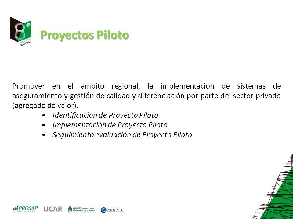 Proyectos Piloto Promover en el ámbito regional, la implementación de sistemas de aseguramiento y gestión de calidad y diferenciación por parte del sector privado (agregado de valor).