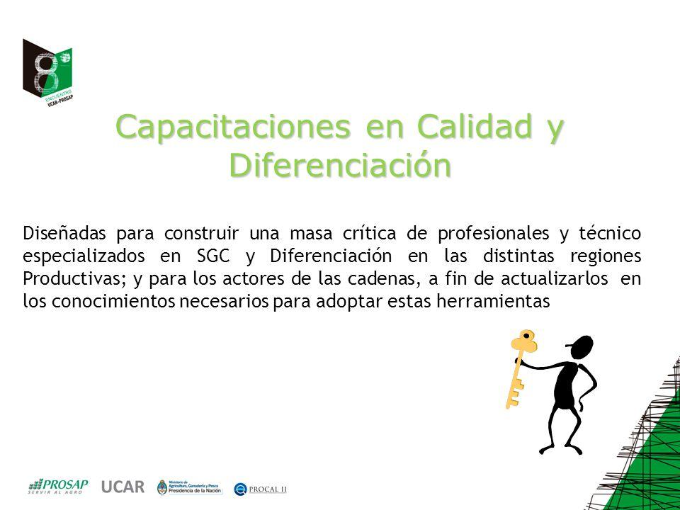 Capacitaciones en Calidad y Diferenciación Diseñadas para construir una masa crítica de profesionales y técnico especializados en SGC y Diferenciación