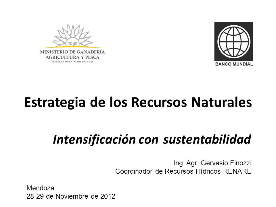 Estrategia de los Recursos Naturales Intensificación con sustentabilidad Ing. Agr. Gervasio Finozzi Coordinador de Recursos Hídricos RENARE Mendoza 28