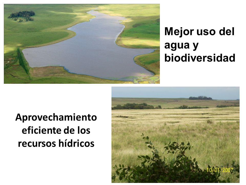 Aprovechamiento eficiente de los recursos hídricos Mejor uso del agua y biodiversidad