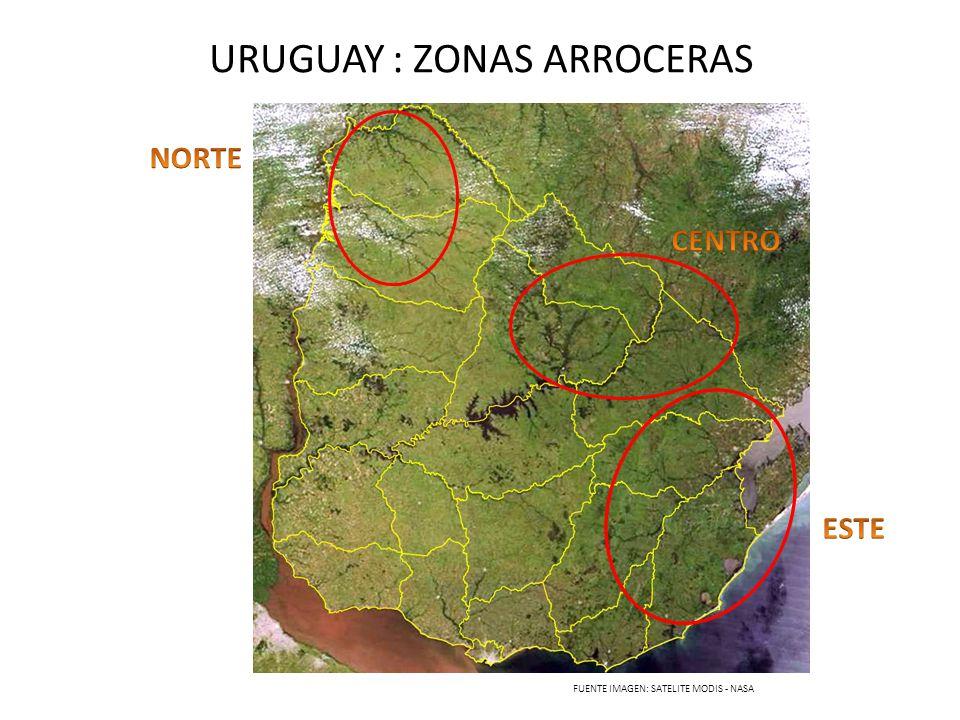 URUGUAY : ZONAS ARROCERAS FUENTE IMAGEN: SATELITE MODIS - NASA