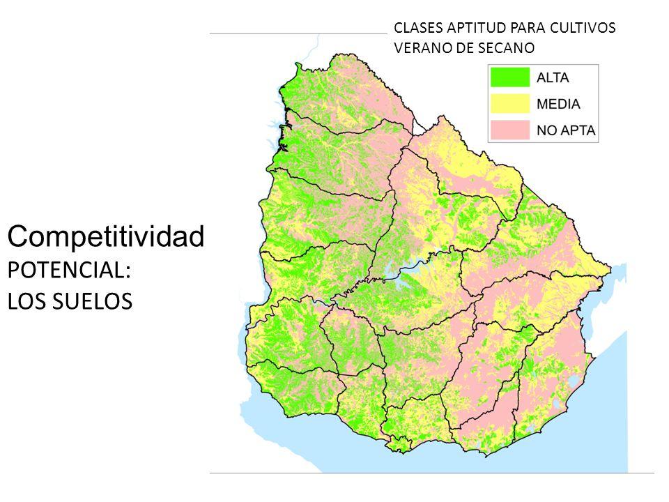 CLASES APTITUD PARA CULTIVOS VERANO DE SECANO Competitividad POTENCIAL: LOS SUELOS