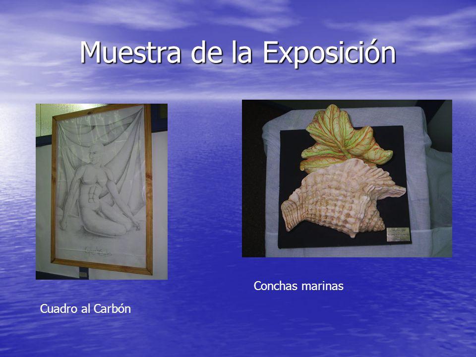 Muestra de la Exposición Cuadro al Carbón Conchas marinas