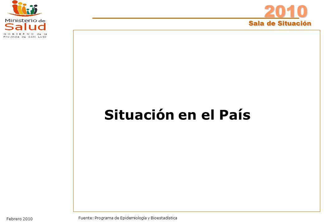 2010 Sala de Situación Febrero 2010 Fuente: Programa de Epidemiología y Bioestadística Situación en el País