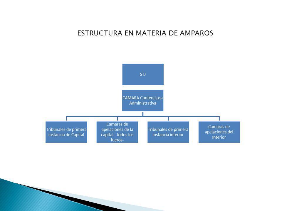 ESTRUCTURA EN MATERIA DE AMPAROS