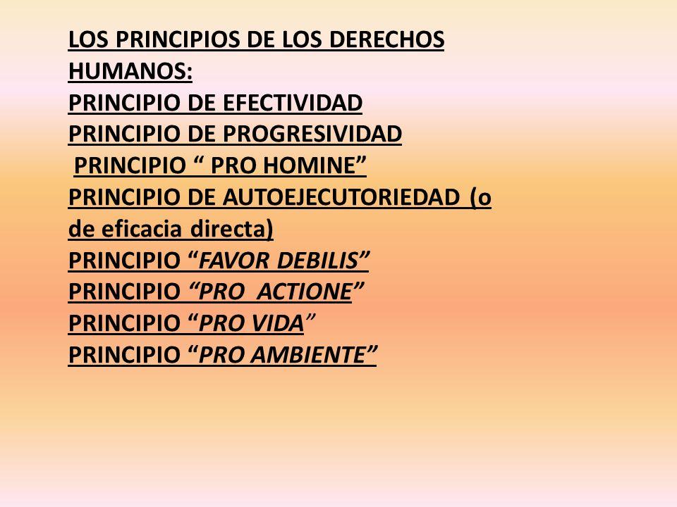 LOS PRINCIPIOS DE LOS DERECHOS HUMANOS: PRINCIPIO DE EFECTIVIDAD PRINCIPIO DE PROGRESIVIDAD PRINCIPIO PRO HOMINE PRINCIPIO DE AUTOEJECUTORIEDAD (o de eficacia directa) PRINCIPIO FAVOR DEBILIS PRINCIPIO PRO ACTIONE PRINCIPIO PRO VIDA PRINCIPIO PRO AMBIENTE