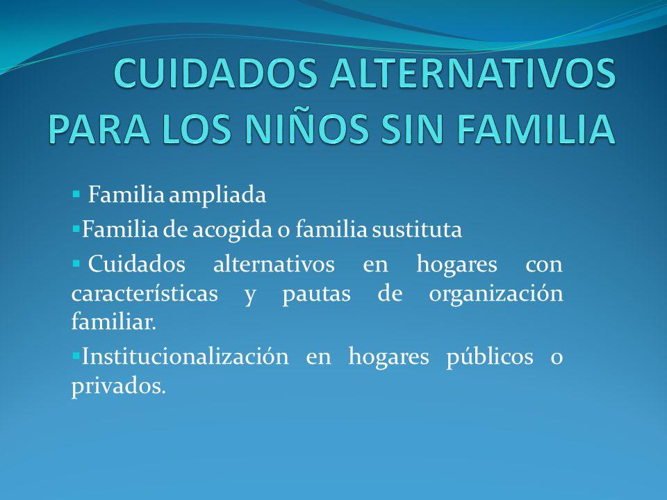 Familia ampliada Familia de acogida o familia sustituta Cuidados alternativos en hogares con características y pautas de organización familiar. Instit