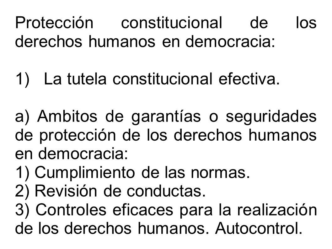 Protección constitucional de los derechos humanos en democracia: 1) La tutela constitucional efectiva. a) Ambitos de garantías o seguridades de protec
