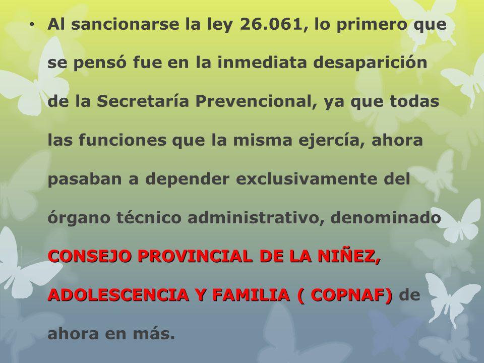 CONSEJO PROVINCIAL DE LA NIÑEZ, ADOLESCENCIA Y FAMILIA ( COPNAF) Al sancionarse la ley 26.061, lo primero que se pensó fue en la inmediata desaparició