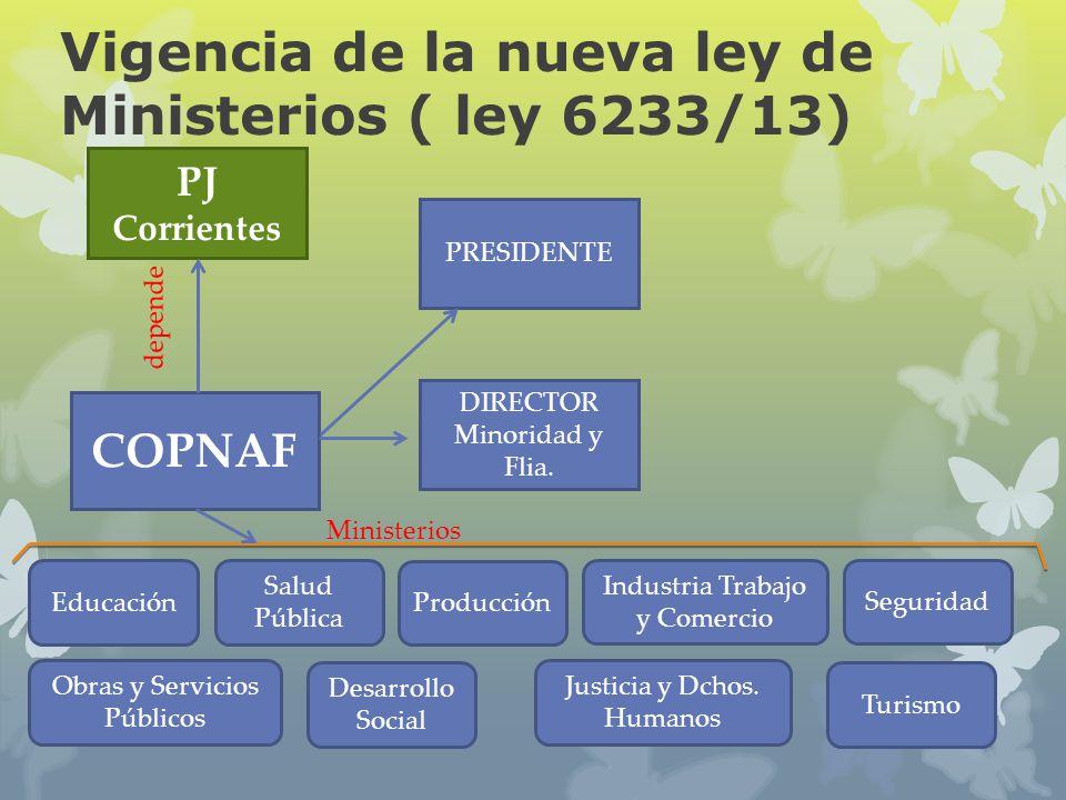 Vigencia de la nueva ley de Ministerios ( ley 6233/13) COPNAF PJ Corrientes PRESIDENTE DIRECTOR Minoridad y Flia. depende Educación Salud Pública Prod