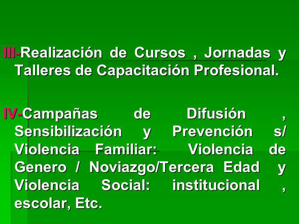 III-Realización de Cursos, Jornadas y Talleres de Capacitación Profesional. IV-Campañas de Difusión, Sensibilización y Prevención s/ Violencia Familia