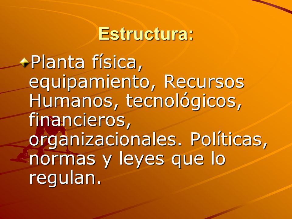 Estructura: Planta física, equipamiento, Recursos Humanos, tecnológicos, financieros, organizacionales. Políticas, normas y leyes que lo regulan.