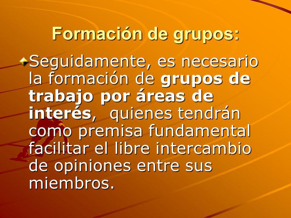 Formación de grupos: Seguidamente, es necesario la formación de grupos de trabajo por áreas de interés, quienes tendrán como premisa fundamental facil