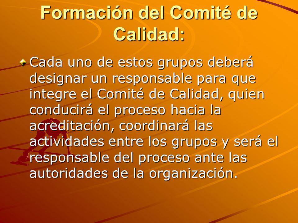 Formación del Comité de Calidad: Cada uno de estos grupos deberá designar un responsable para que integre el Comité de Calidad, quien conducirá el pro