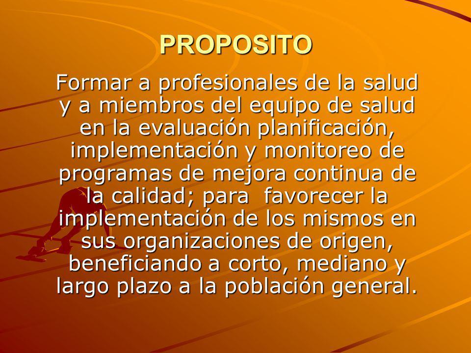 PROPOSITO Formar a profesionales de la salud y a miembros del equipo de salud en la evaluación planificación, implementación y monitoreo de programas