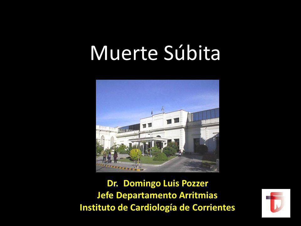 Muerte Súbita Dr. Domingo Luis Pozzer Jefe Departamento Arritmias Instituto de Cardiología de Corrientes