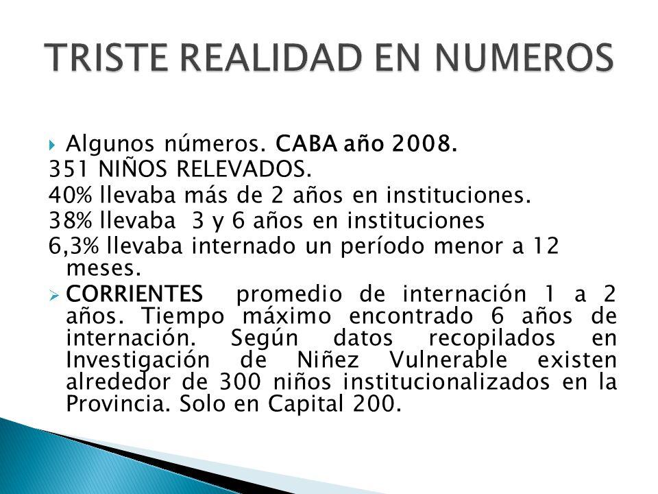 Algunos números.CABA año 2008. 351 NIÑOS RELEVADOS.