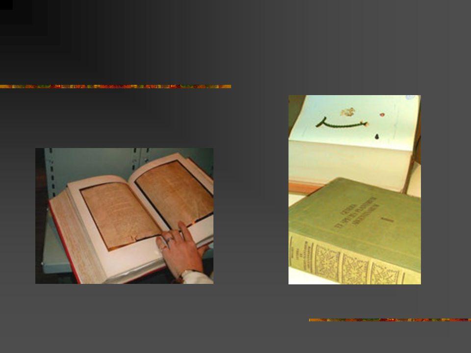 Cada caja contiene distintos tipos de documentación: Programas de estudios.