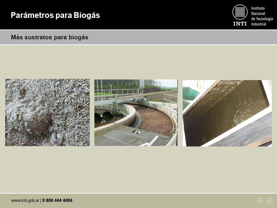 Parámetros para biogás Normas Metales Principales: Potasio Co Mo Ni Se Cr Mn Pb