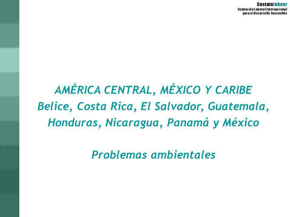 AMÉRICA CENTRAL, MÉXICO Y CARIBE Belice, Costa Rica, El Salvador, Guatemala, Honduras, Nicaragua, Panamá y México Problemas ambientales