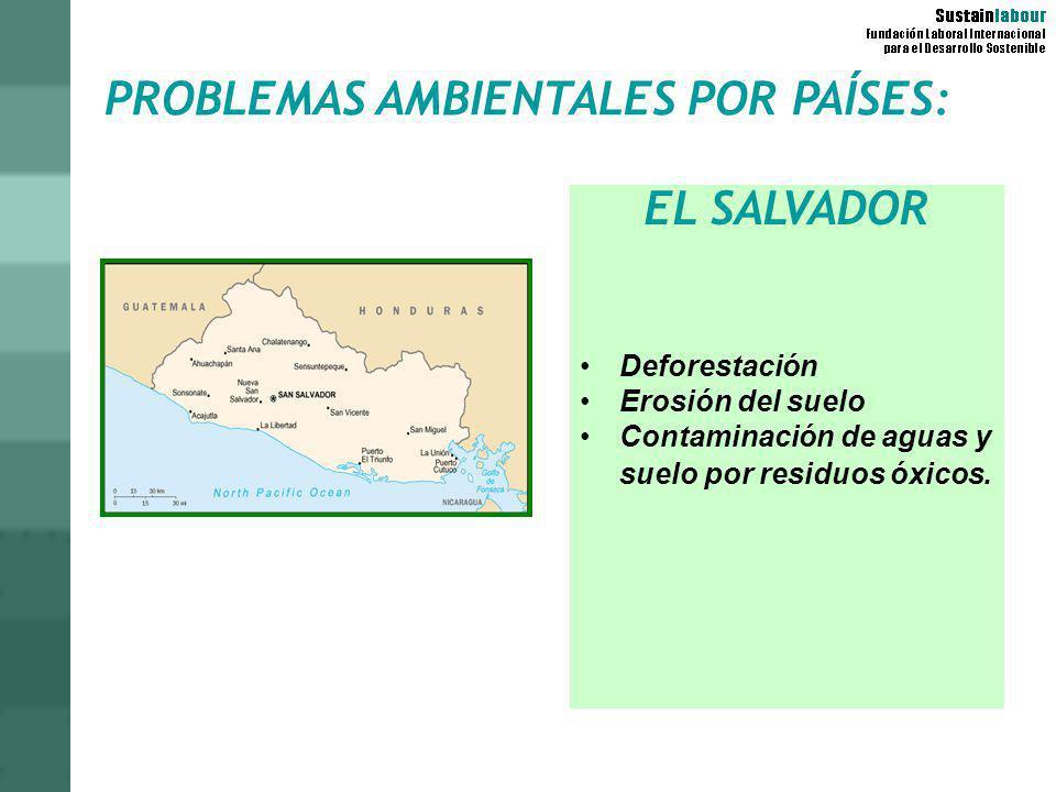 PROBLEMAS AMBIENTALES POR PAÍSES: EL SALVADOR Deforestación Erosión del suelo Contaminación de aguas y suelo por residuos óxicos.