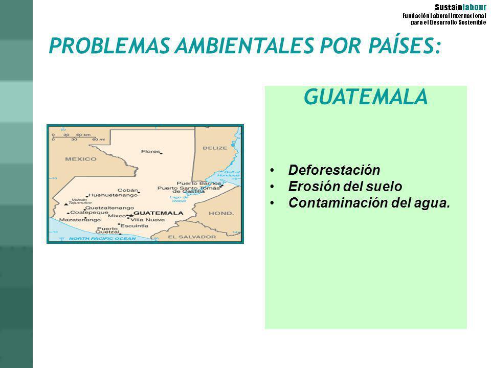 PROBLEMAS AMBIENTALES POR PAÍSES: GUATEMALA Deforestación Erosión del suelo Contaminación del agua.