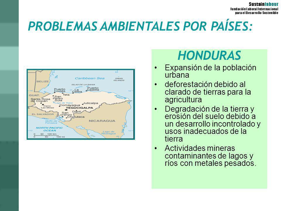 PROBLEMAS AMBIENTALES POR PAÍSES: HONDURAS Expansión de la población urbana deforestación debido al clarado de tierras para la agricultura Degradación
