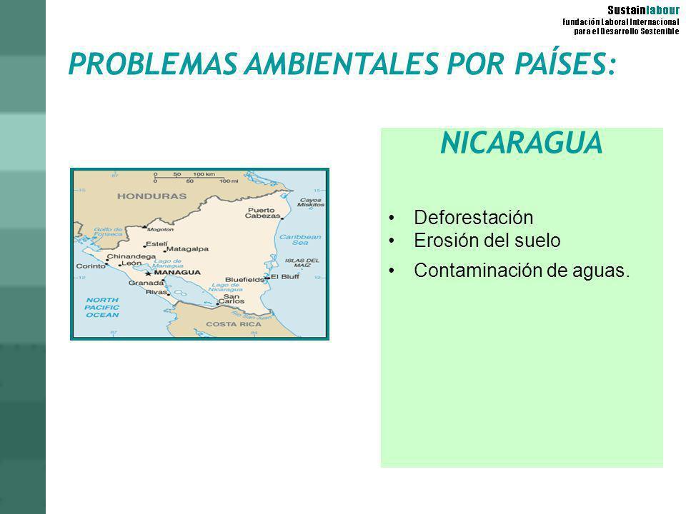 PROBLEMAS AMBIENTALES POR PAÍSES: NICARAGUA Deforestación Erosión del suelo Contaminación de aguas.