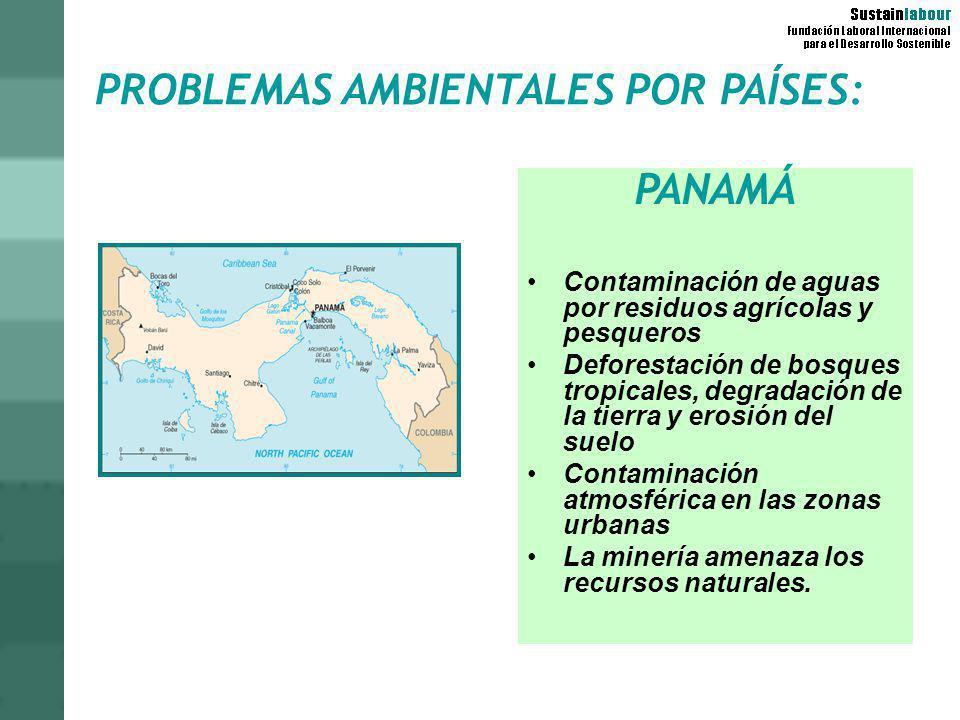PROBLEMAS AMBIENTALES POR PAÍSES: PANAMÁ Contaminación de aguas por residuos agrícolas y pesqueros Deforestación de bosques tropicales, degradación de